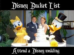 attend a disney wedding